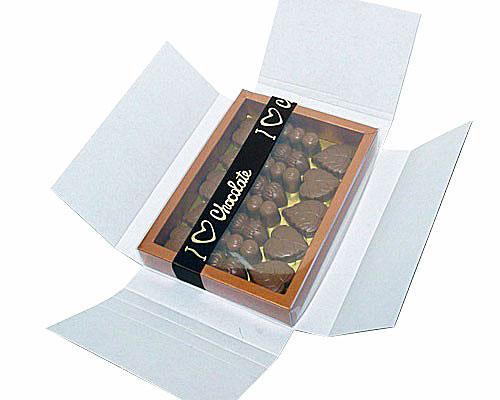 Boîte pour envoyer, pour la boîte 175x125x25mm avec couvercle transparante