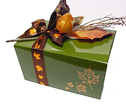Ballotin Autumn design 1000gr Vert foret laque