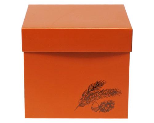 Cubebox Autumn figures 1000 gr. sunset orange