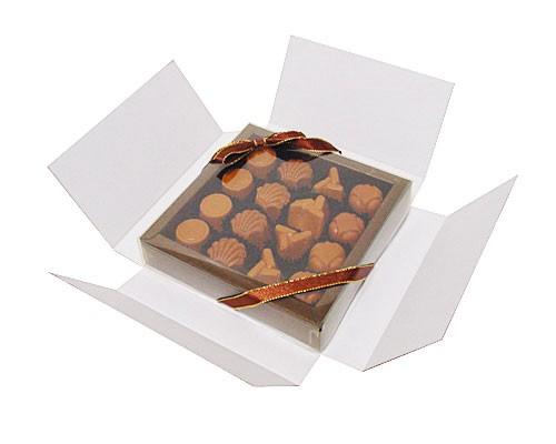 Boîte pour envoyer, pour la  boîte 126x126x25mm avec couvercle transparante